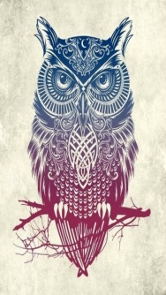 hd_owl_design-wallpaper-10957868